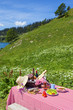 Picnic in french alps