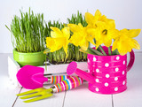Spring flowers and green grass with garden tools .