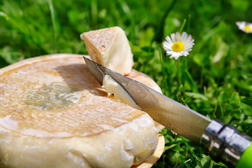 reblochon,fromage au lait cru, terroir français