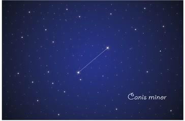 Constellation Canis minor