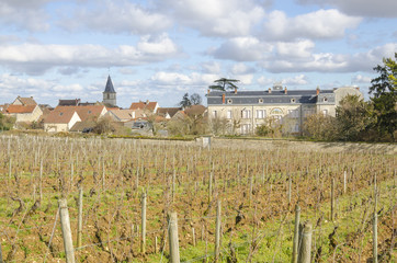 the village of Vosne-Romanee, burgundy, France, saone-et-loire
