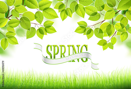 Natural background. Vector