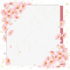 桜  春 カード