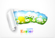Easter background with torn paper. Vector