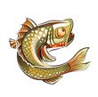 Fish. Eps10 vector illustration. Isolated on white background