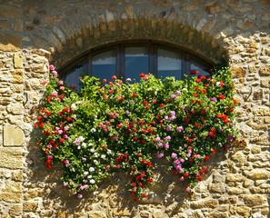 bentana con flores