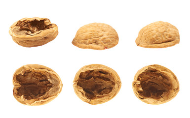 Walnut shells isolated