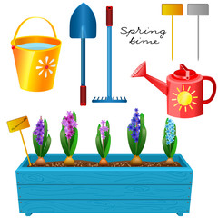 Box with blooming hyacinths and a set of garden tools. Spring ti