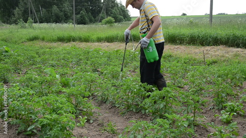 farmer with green spray spraying potato colorado beetle weed