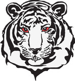 Head of tiger in vector format