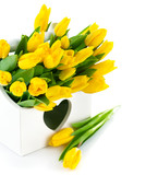 spring yellow tulips in wooden basket isolated on black