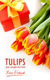 Beauty tulips