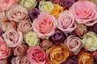 Pastel wedding roses