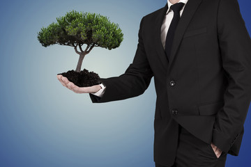 business man with tree in hands, ecology concept