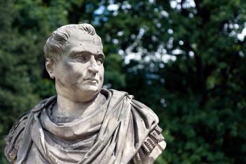 Aulus Vitellius, Roman Emperor bust