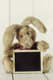 Teddy Bear Like Home Made Bunny Rabbit on Wooden White Backgroun