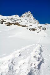 Escursione in neve fresca