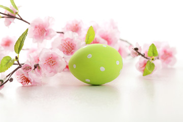 Easter egg and cherry blossom flowers on  white