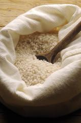 Rice Riso أرز Hrísgrjón イネ 水稻 Рис посевной