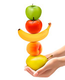 Hands holding a pyramid of healthy fruit. Diet concept. Vector.