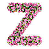 Z, flower alphabet isolated on white with clipping path