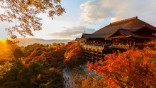 "Постер, картина, фотообои ""Kiyomizu-dera temple in Kyoto"""