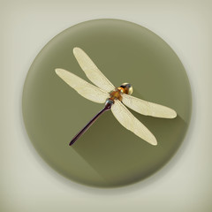 Dragonfly, long shadow vector icon