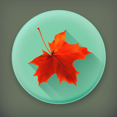 Maple leaf, long shadow vector icon