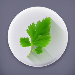 Parsley, long shadow vector icon