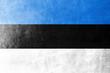 Estonia Flag painted on leather texture