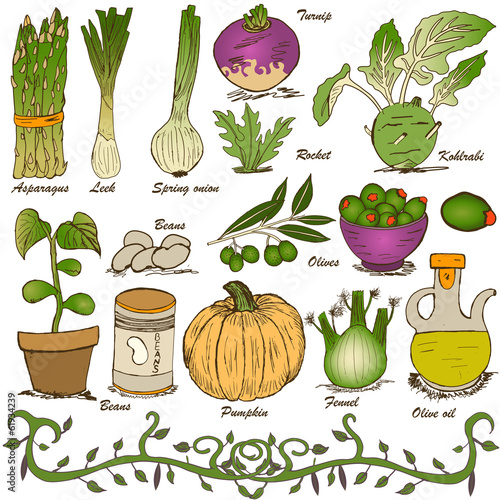 hand drawn vegetable set 5