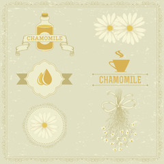 chamomile, camomile,  herb flower, floral vintage background