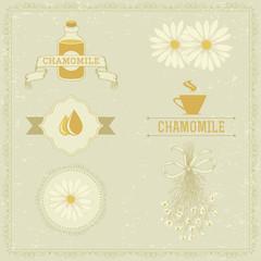 chamomile, camomile,  herb flower, floral vintage background
