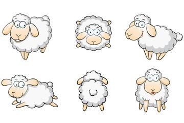 Schafe Set Schafsherde