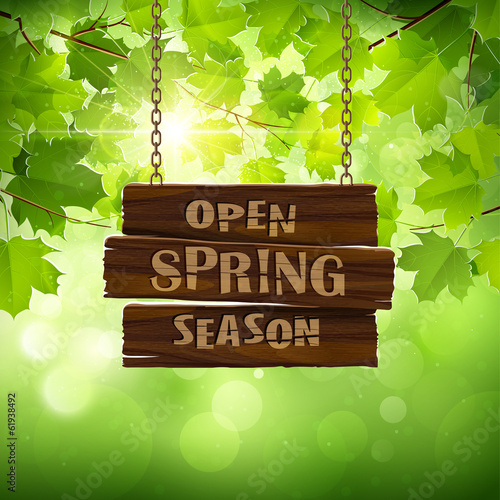 Natural background with leaves and wooden sign. Vector