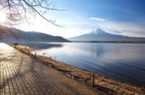mountain fuji in morning winter from lake kawaguchiko