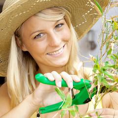 Frau mit Gartenschere beschneidet Pflanze