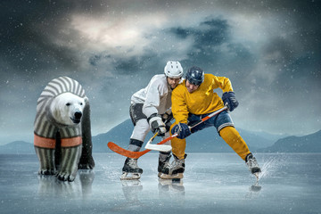 Ice hockey players on the ice and polar bear