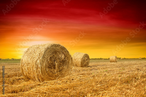 Aluminium Rood traf. Hay bale in the countryside
