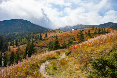 Gorgeous mountain view with sky and trees. Trail in Carpathian.