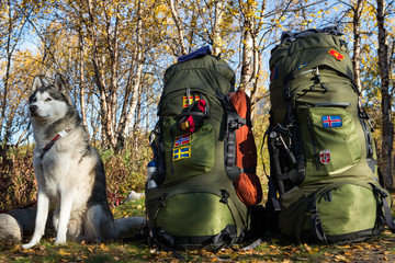 Husky and Backpacks