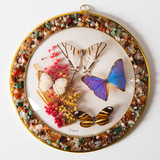 butterfly plate composition, closeup view