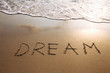 dream - 61950819