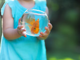 Little baby girl holding a fishbowl with a goldfish on a nature