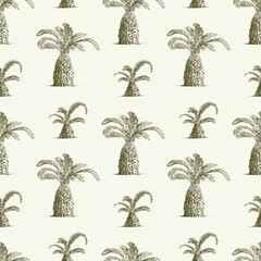 pattern of palms