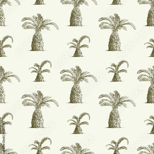 pattern of palms