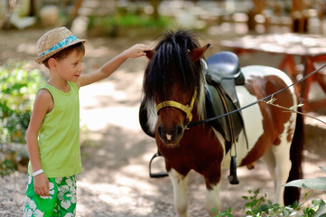 boy hat petting a beautiful colorful pony in nature