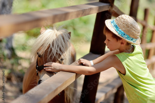 at the zoo behind a wooden fence stands with white mane pony boy