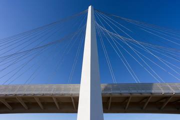 Famous bridges complex by arch Calatrava