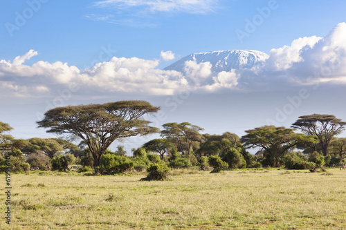 Kilimanjaro with snow cap